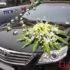 Cho thuê xe cưới 4 chỗ Toyota Altis