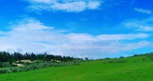 bãi cỏ xanh tại gành Ông cũng chính là bối cảnh trong phim